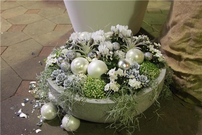 succulents, moss, and frosted pinecones for modern seasonal decor // Bloem en Blad | Vakblad voor de bloemendetailhandel - Home