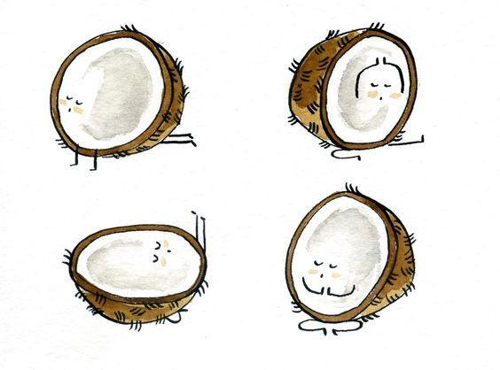 Did you know: Coconut oil has a bunch of unique health benefits, including curbing sugar cravings. (Illustration by Marta Prior.) – I Quit Sugar