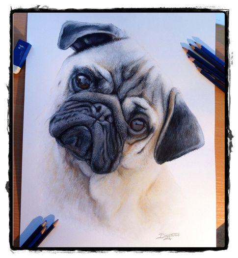 25 belos desenhos de animais para a sua inspiração 24