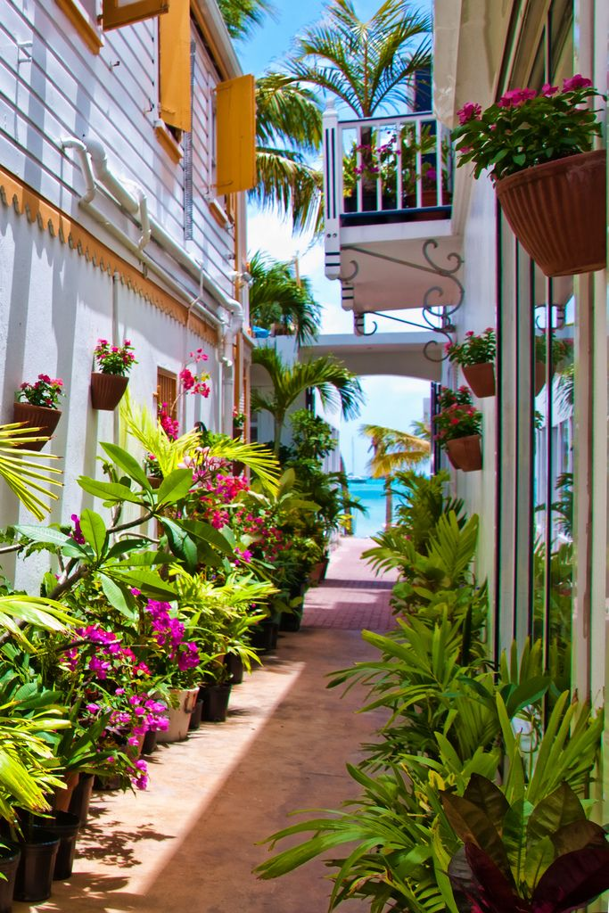 Front Street, Philipsburg, Sint Maarten. This is the capital of the dutch side of the island, Sint Maarten. Theres a litte alley at the beginning of front street that might give you the feel of being in a rain forest!