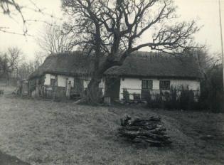 Tystruphuset på hjemstedet, 1953.