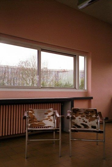 A view into the Villa Savoye by Le Corbusier, Poissy - purple DIARY