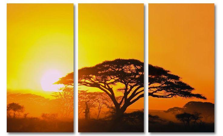 Oranje foto schilderij zonsondergang acacia boom Afrika op canvas