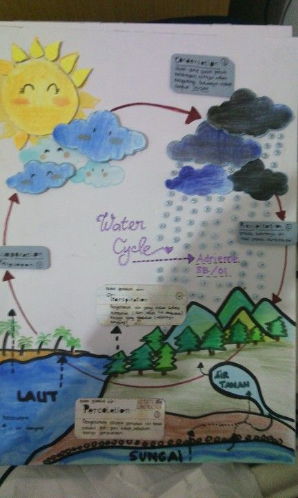 9 best water cycle images on pinterest school projects science water cycle poster ccuart Choice Image
