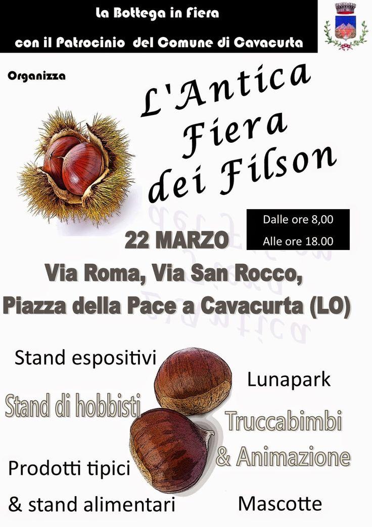 LA BOTTEGA IN FIERA: 22/03/2015 - Cavacurta (LO)