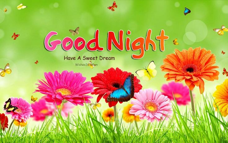Good Night Have a Sweet Dreams Images For Girlfriend Free Download, good night have a sweet dream image, good night images for girlfriend, have sweet dreams