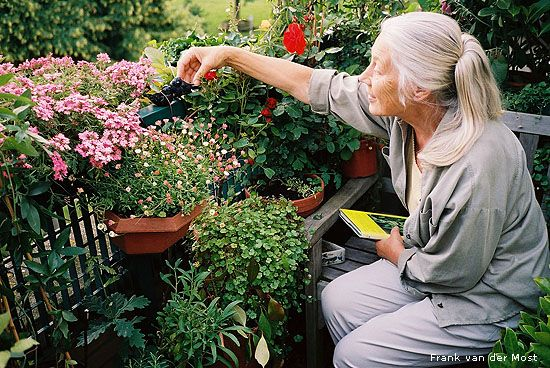 Gardening for Life Growing older shouldn't prevent you from exercising your green thumb when you adapt your cultivating practices to fit you...