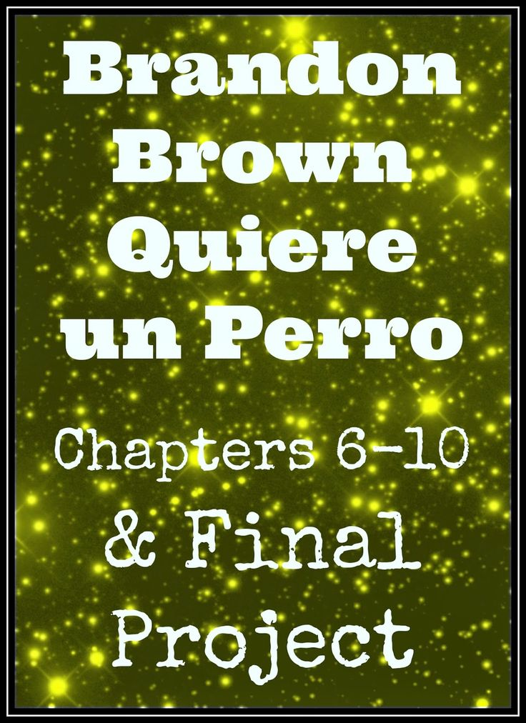 Brandon Brown Quiere un Perro - plans for chapters 6-10 and Final Project