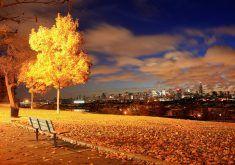 autumn desktop wallpapers 2h0
