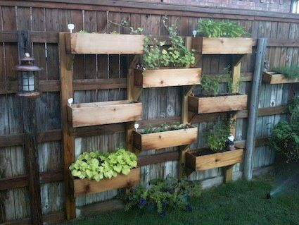 Fence garden. With some herbs and veggies, this bad boy is functional architecture.: Fence, Garden Ideas, Outdoor, Pallet, Gardening, Gardens, Vertical Garden, Backyard