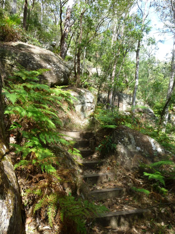 Secret Stairs At Palm Beach -  Or the nomal Sightseen Walking Way to the the Halfisland - Australia