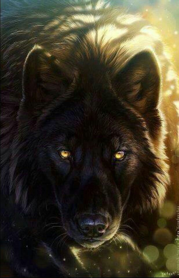 dont forget you have to love the wolves<3