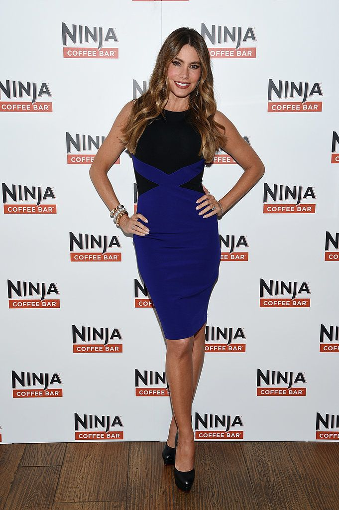 The year 2015 is when Sofia Vergara figured out exactly what fashion trends work for her body. The Modern Family actress often stepped out wearing outfits with the same silhouette, fitted all around to best show off her curves — can you blame her for always wanting to show her insane body?