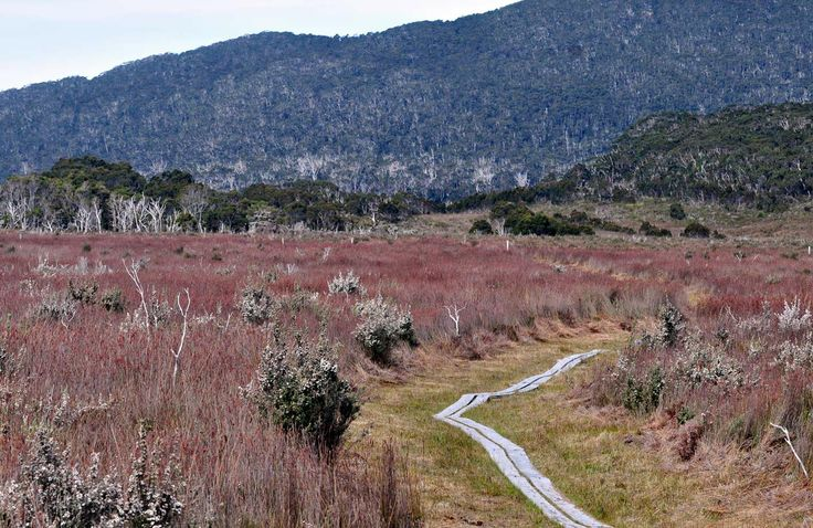 South Coast Track - Tasmania