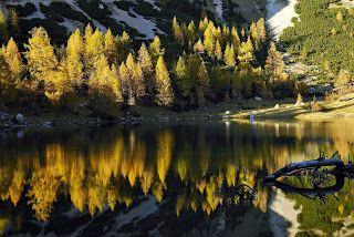 Autunno..... il trekking in Carnia una gioia per gli occhi! @carniawelcome