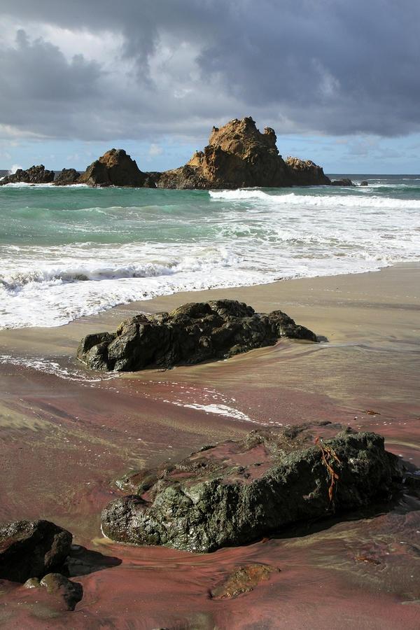 Pink sand beach - CA