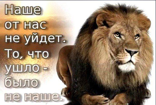 Мобильные знакомства на MyLove.Ru