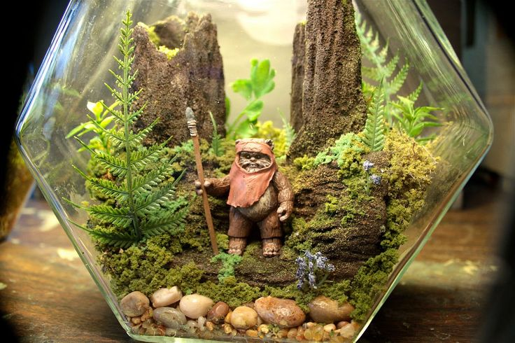 15 Delightfully Diverse DIY Terrarium Ideas: Tiny Green Delights!