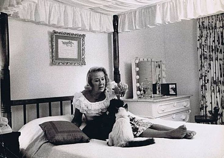 Vivian Vance and her cat   From the estate of Vivian Vance Photo: From The Serge Matt Collection