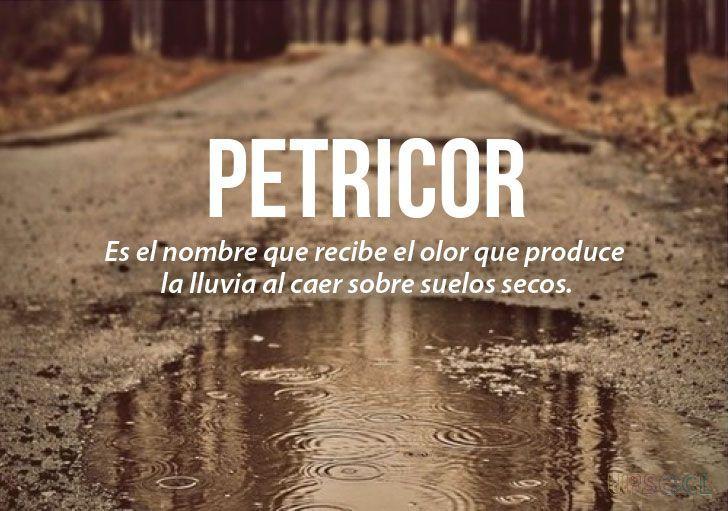 Las 20 palabras más bonitas del idioma español (II) | Upsocl