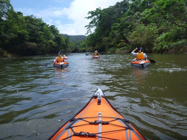 Kayaking down the beautiful Dawadawa River in Milne Bay.  Try this amazing new trek & paddle adventure with PNG Trekking Adventures: http://www.papuanewguinea.travel/x,1,2415/png-trekking-adventures.html  ‪#‎PNG‬ ‪#‎PapuaNewGuinea‬ ‪#‎Travel‬ ‪#‎MilneBay‬ ‪#‎Adventure