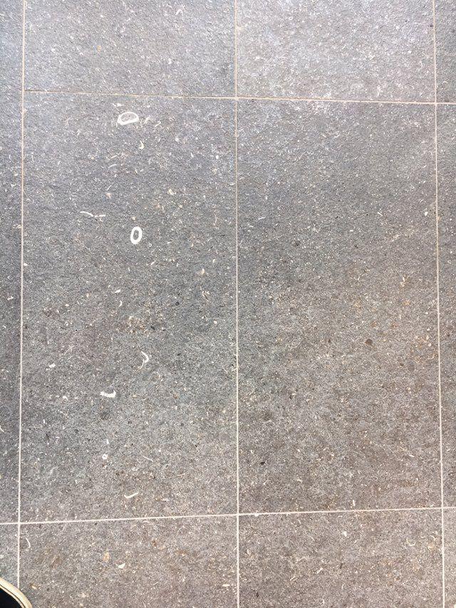 Lijn. Tegels gescheiden door diverse lijnen.