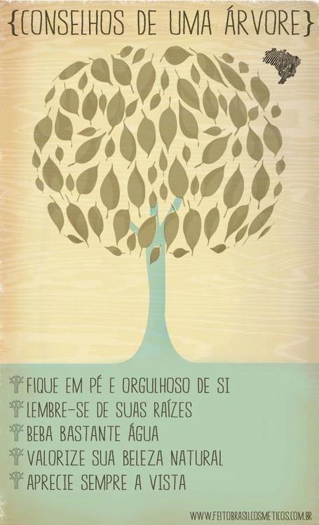 Conselhos de uma árvore: Fique em pé e orgulhoso de si; Lembre-se de suas raízes; Beba bastante água; Valorize sua beleza natural; Aprecie sempre a vista.