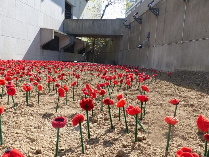 5000 POPPIES | A Community Tribute of Respect and Remembrance