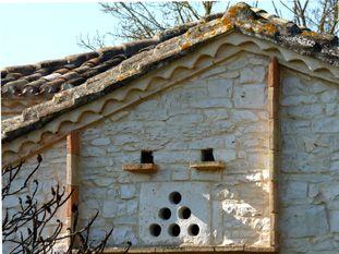 Les pigeonniers du tarn et Garonne St-Georges: St Martin de Caussanille