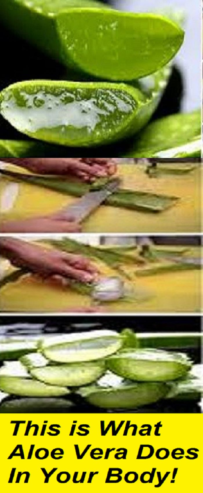 EGYPTIANS CALLED IT THE PLANT OF IMMORTALITY, THIS IS WHAT ALOE VERA DOES IN YOUR BODY!