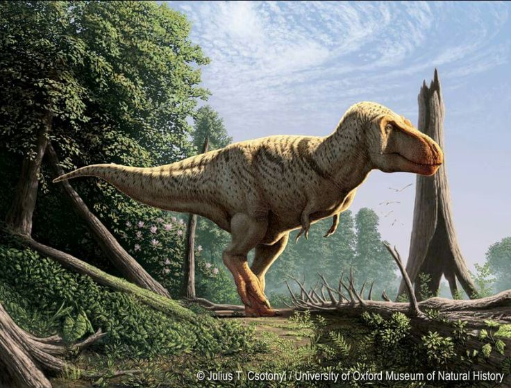 Dinosaur Hoax - Dinosaurs Never Existed!
