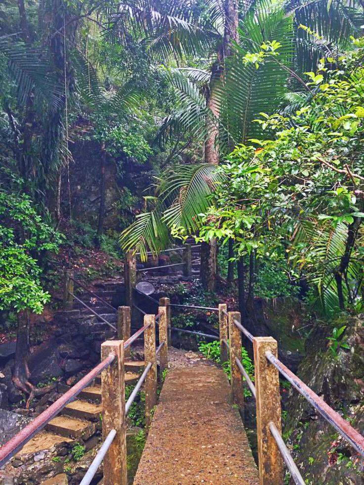 San Juan, Puerto Rico. Hike the La Mina Falls walking trail and explore El Yunque, the only tropical rainforest in the United States parks system.