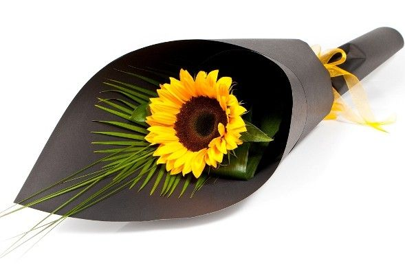 flowers wrapped - Google Search