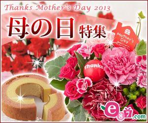 e87_mother_2013_300_250.jpg 300×250ピクセル