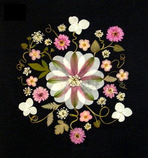 Pressed Flower Cards  set of 6 notecards  All by VTPressedFlowers, $10.00