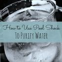 Using Pool Shock to Purify Water