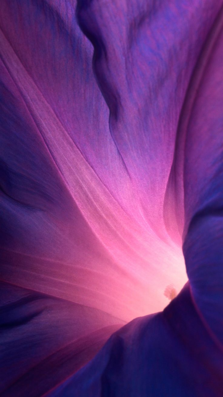 Abstract Purple Flower Lockscreen iPhone 6 wallpaper