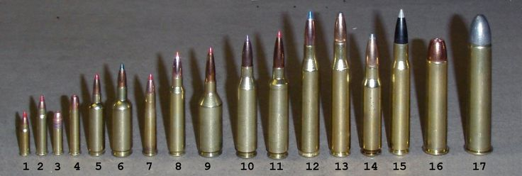comparing the ballistics of the 30 60 and 270 rifles Comparing ballistics of the 30-06 and 270  comparing ballistics of a 30-06 and 270  a person can take the 30-06 rifle more places than the 270.