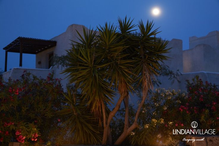 Magical moments in Lindian Village...Nature at its finest! #fullmoon #magic #rhodes #lindianvillage #moments