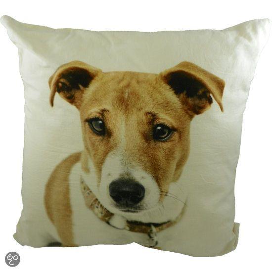 Mars & More Sierkussen kussen canvas hond jack russell halsband