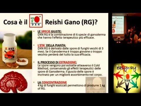 Cos'è il Reishi Gano DXN? What's Reishi Gano? - YouTube