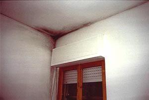 υγρασια,μυκητες και μουχλα απο ελλειψη θερμομονωσης της οροφης http://www.monoseis-monotica.gr/monotica2
