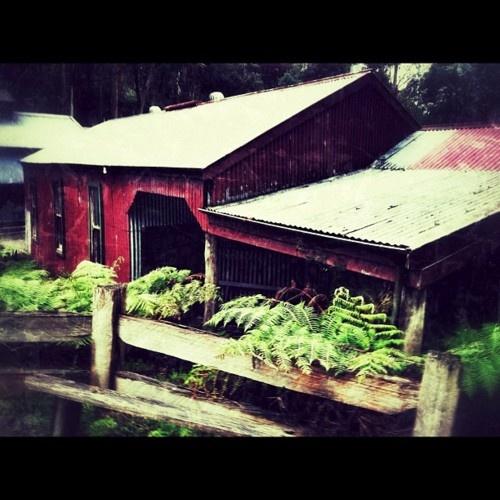 Korumburra's Coal Creek mining town #gippsland