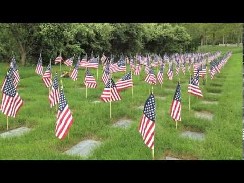 bourne national cemetery flags veterans day