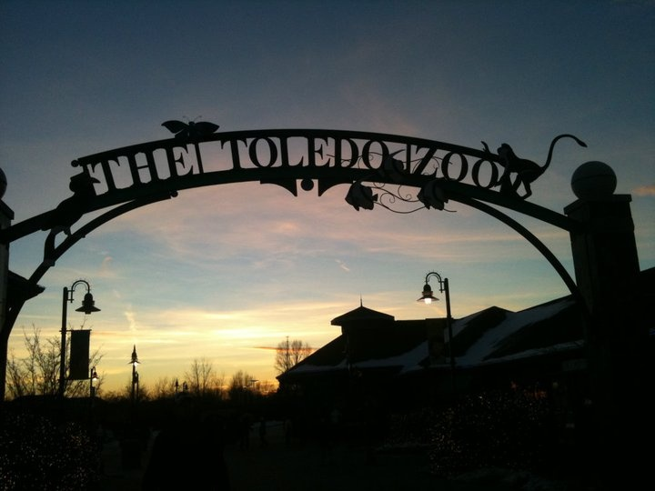 Toledo Zoo: Zoos Membership, Places Travel, Little One, Favorite Places, Experienc Travel, Favorite Zoos, Toledo Zoos, Zoos Animal Exhibitions Images, Steel Arches Bridges