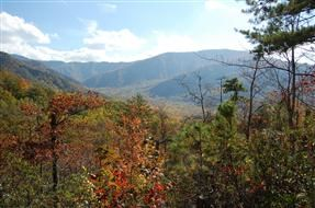 www.MyGatlinburgCabin.com  Sugarland Riding Stables / Smoky Mountain Stables Horseback riding in the National Forest
