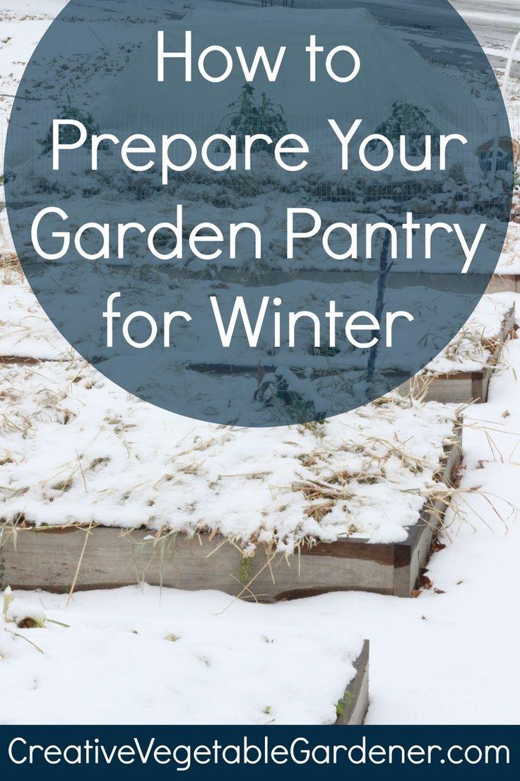 15309 best winter crops images on pinterest winter vegetable