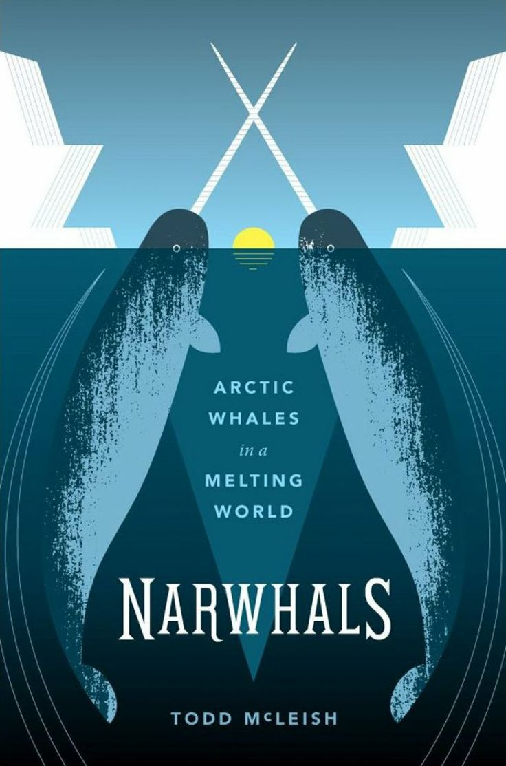 Narwhal and unicorn cartoon narwhal jokes funny pictures - Narwhal Habitat Google Search