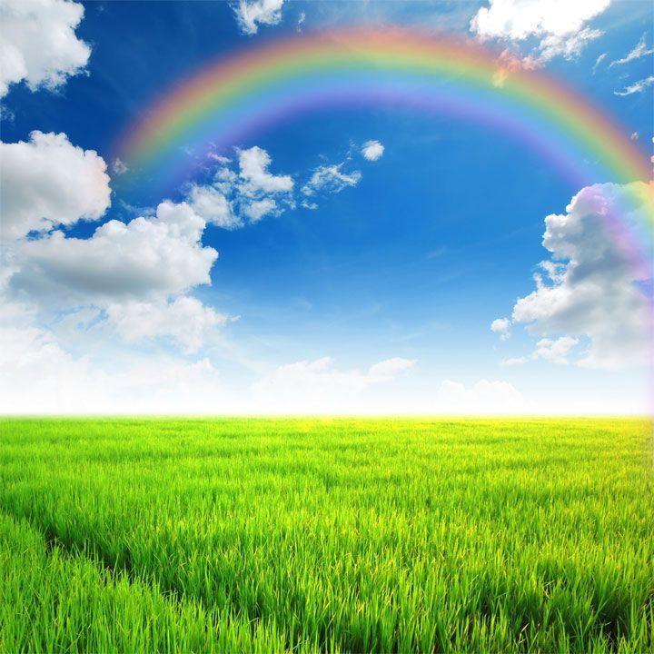 Sei bella come  è bello il prato tenero dietro l'arcobaleno  nel tacito meriggio d'acqua e sole,  come i riccioli della primavera  nel sole dell'aurora,  l'avena fine della staccionata  contro il sole calante dell'estate,  come i tuoi occhi verdi e il mio riso vermiglio,  Il mio profondo cuore e il mio amoroso palpito. (Juan Ramón Jiménez)