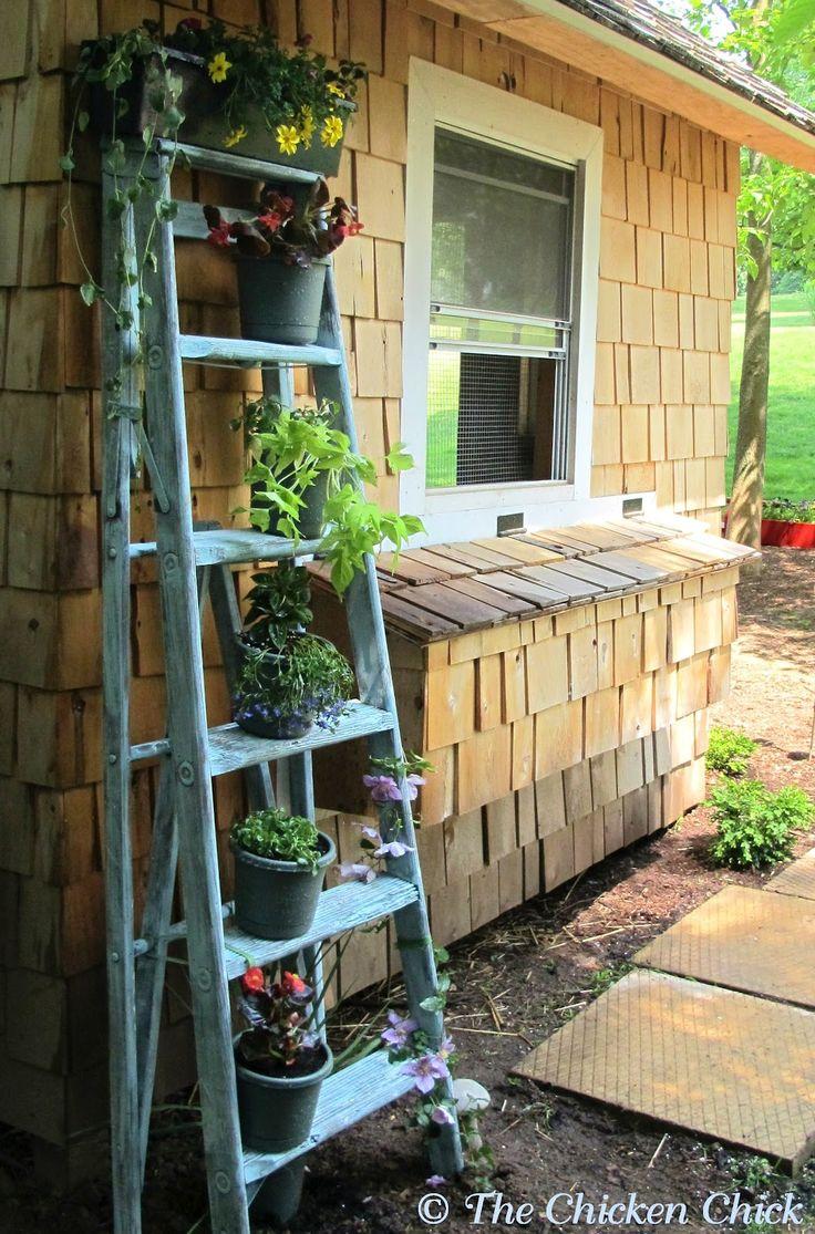 Chicken coop decor-recycled ladder planter